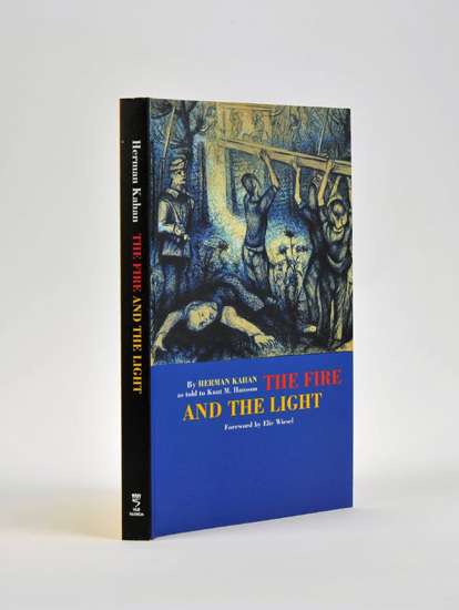 Picture of The Fire and the Light