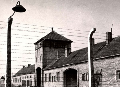 Picture of Online Course:  Auschwitz