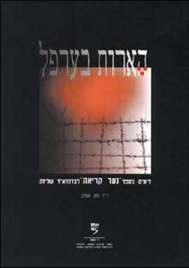 Picture of הארות בערפל