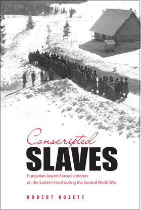 Picture of Conscripted Slaves